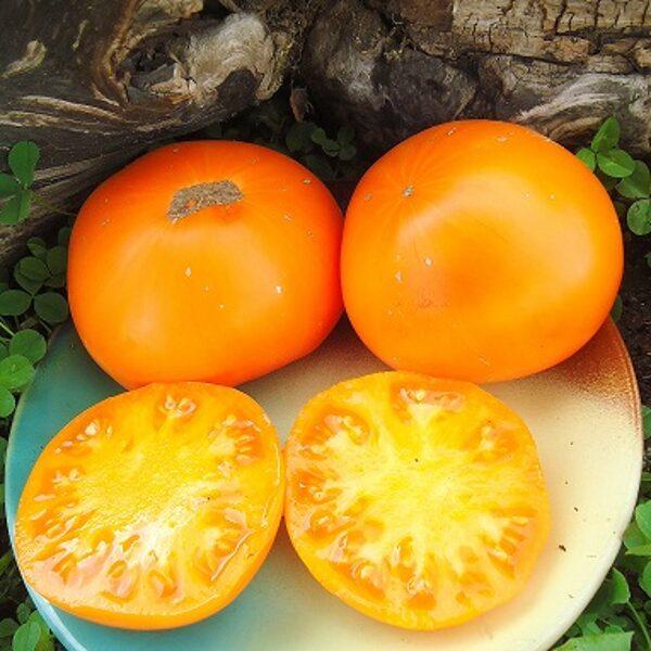 Medus aromāts (Medoviy aromatniy)